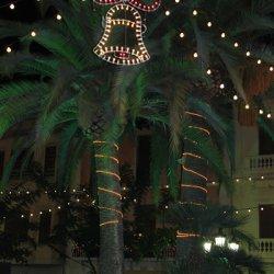 Palmeras navideñas en la ciudad de Novelda de Alicante