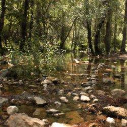 Piedras en el Nacimiento del Río Mundo
