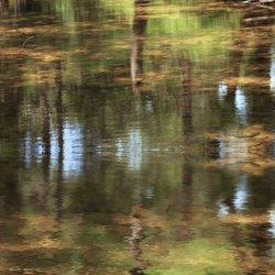 Reflejos en el Nacimiento del Río Mundo