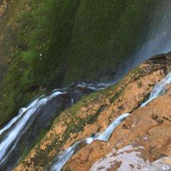 Verde y dorado en el Nacimiento del Río Mundo
