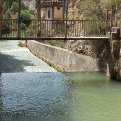Truchas en el Cañón del río Mundo en Albacete