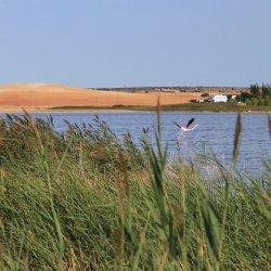 Lagunas saladas en la provincia de Albacete