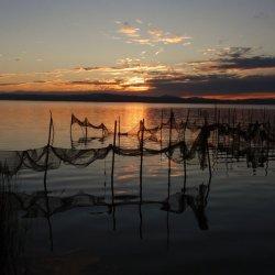 Redes de pesca en La Albufera de Valencia
