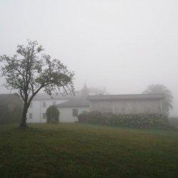 """Niebla en el Hotel """"Pazo de Terrafeita"""""""
