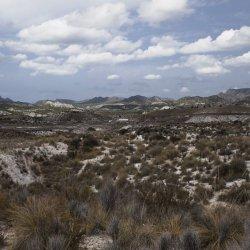 Alrededores del pueblo Las Minas en la provincia de Albacete