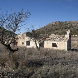 Parcela abandonada en la provincia de Alicante